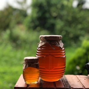 Mật ong hoa cà phê Đắc Lak nguyên chất
