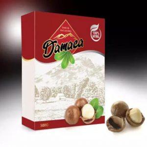 Hạt Macca Daklak loại 2 gói 500g