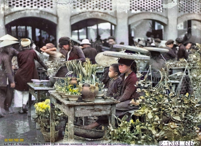 Thú chơi hoa thủy tiên của người Hà Nội xưa. Trong ảnh, những chậu hoa Thủy tiên được bày bán ở chợ. Nguồn: Đại Nam phục ảnh.