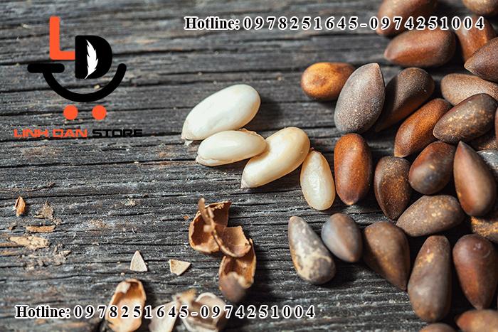 Hạt thông có thể làm bánh, nướng kẹo mạch nha để thêm hương vị và dinh dưỡng